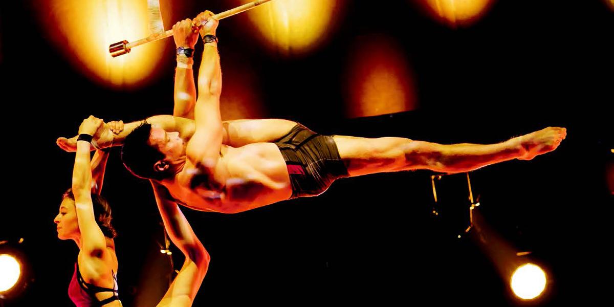 Basel im Circus-Fieber